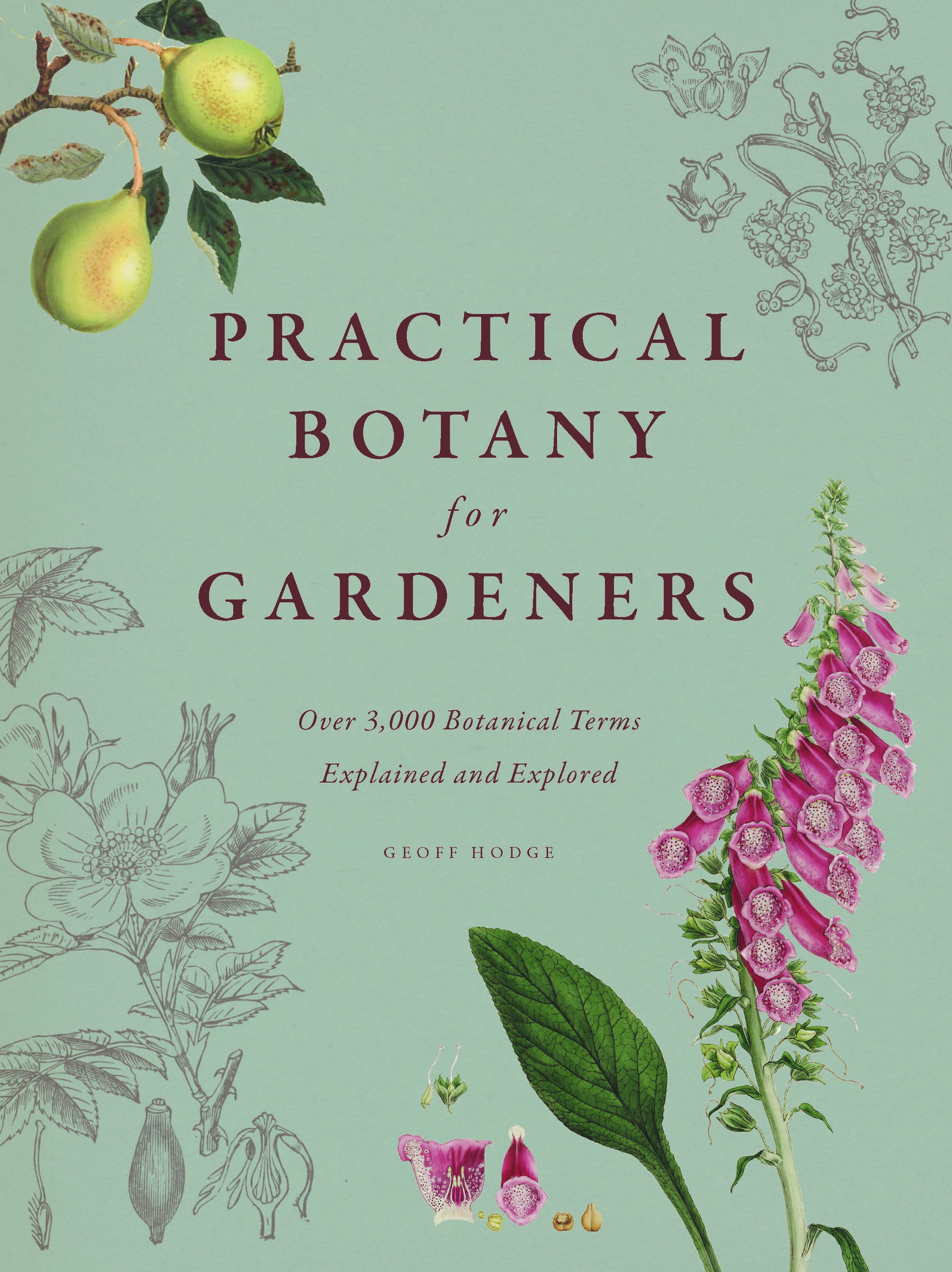 Practical botany for gardeners over 3000 botanical terms explained addthis sharing buttons fandeluxe Choice Image