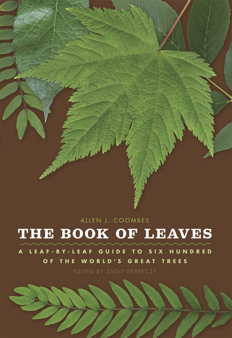 the book of leaves a leaf by leaf guide to six hundred of the