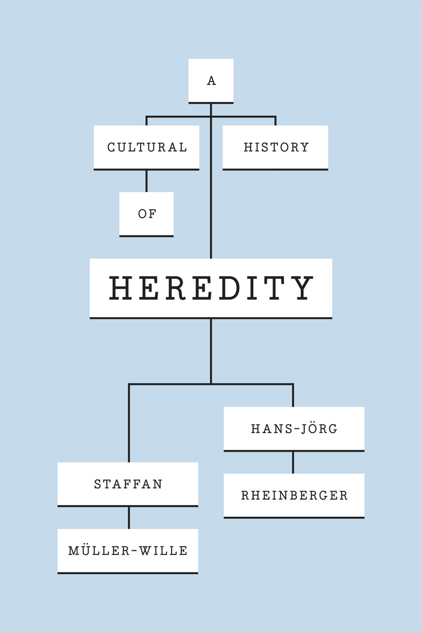 Essay heredity