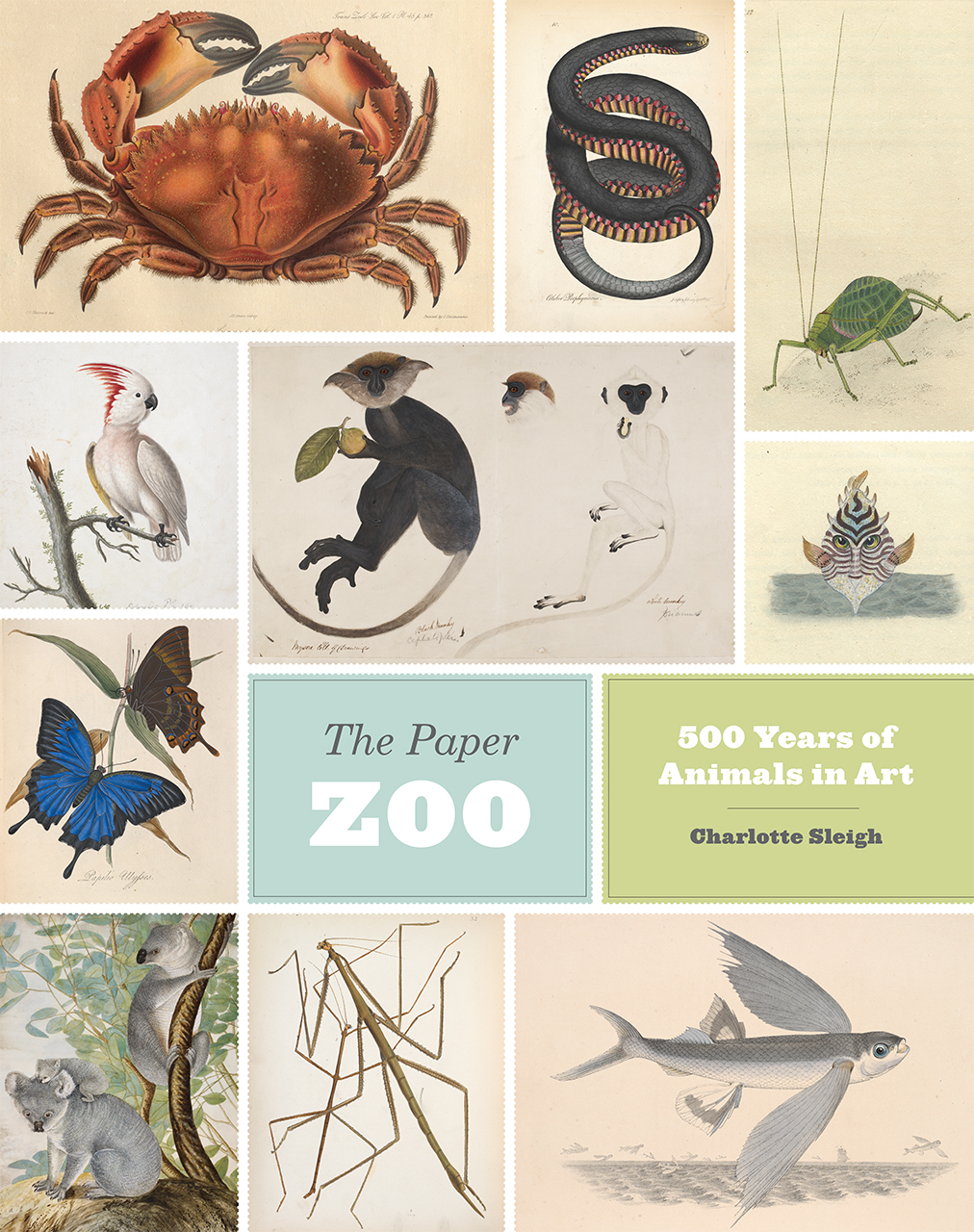 the paper zoo 500 years of animals in art sleigh addthis sharing buttons