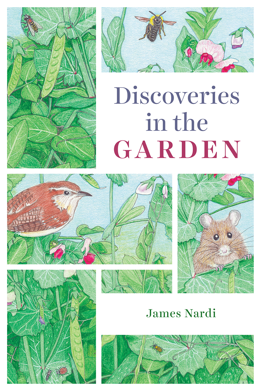 gardens an essay on the human condition harrison discoveries in the garden