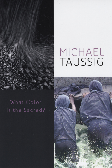 What Color Is the Sacred?, Taussig