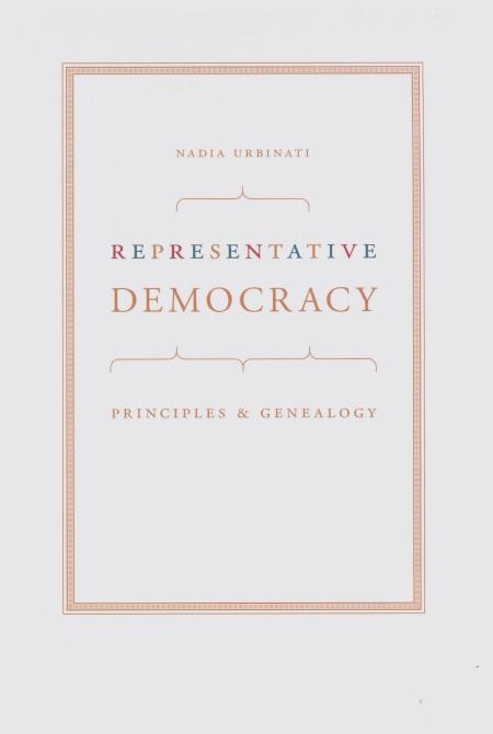 democratic representation essay