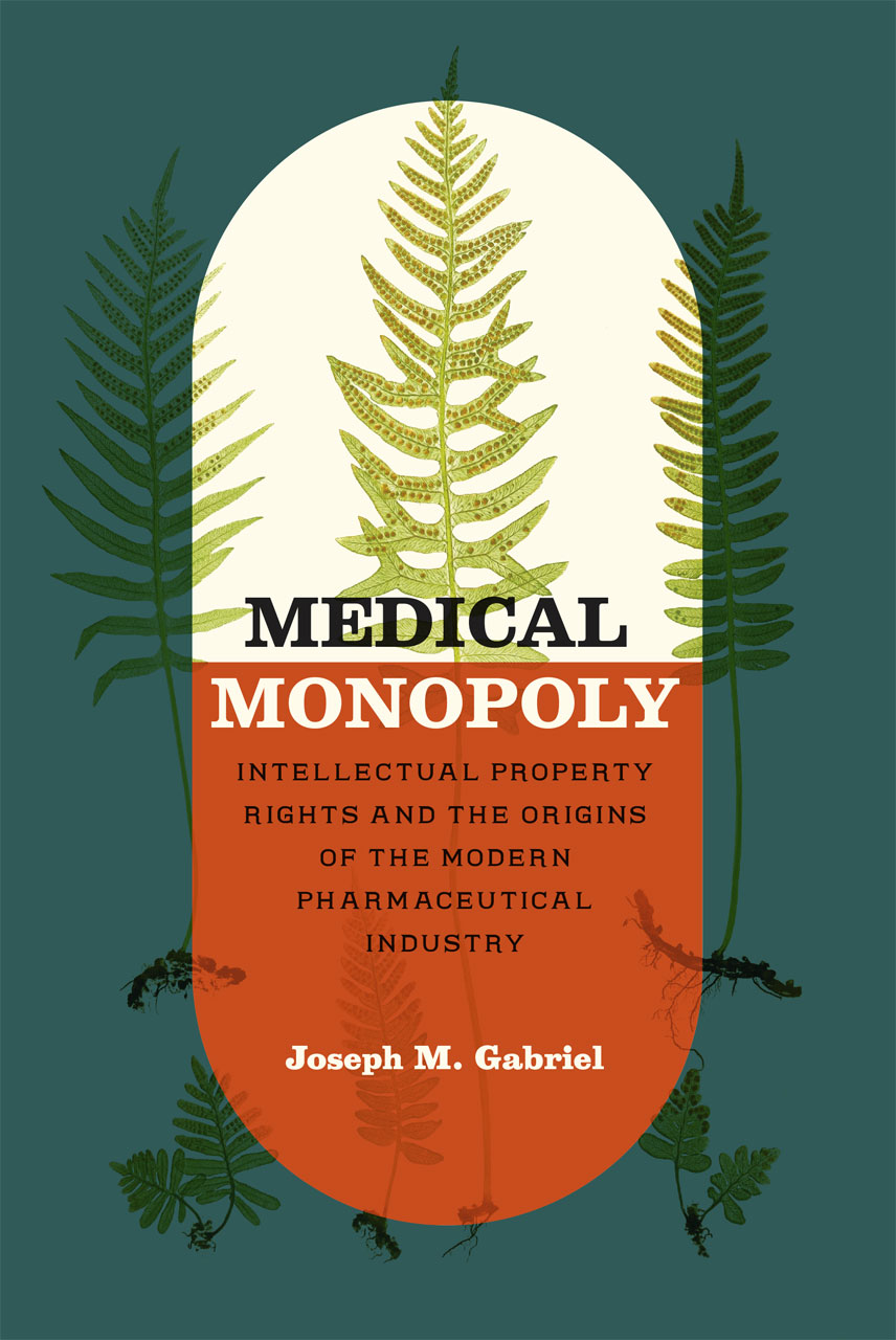 Medical Monopoly Intellectual Property Rights And The border=