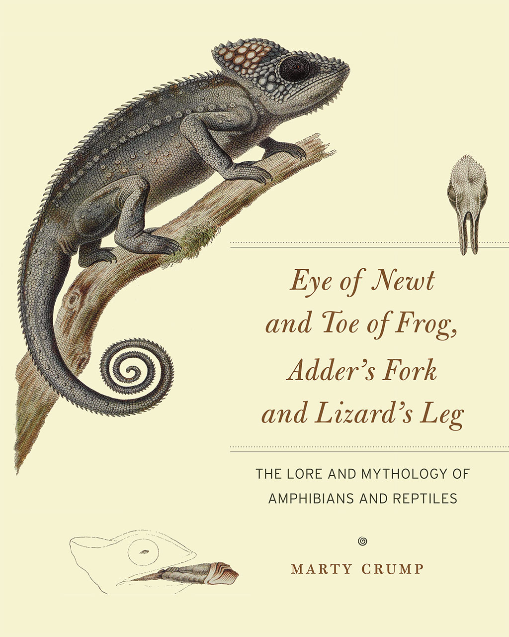 Eye Of Newt And Toe Of Frog Adders Fork And Lizards Leg The Lore
