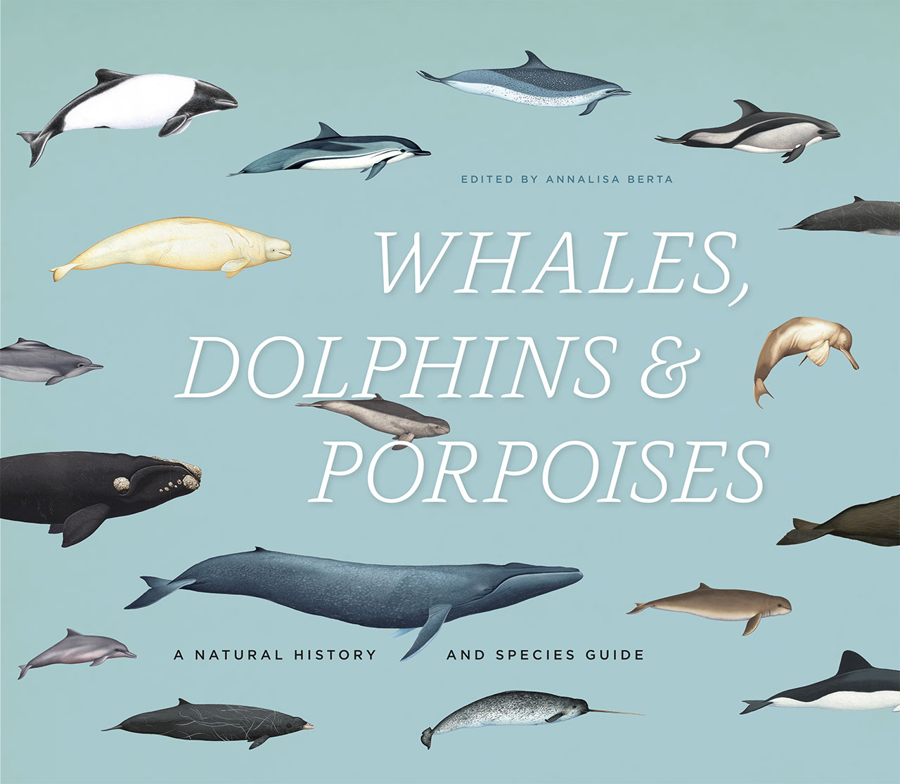 Whales, Dolphins, and Porpoises: A Natural History and Species Guide ...