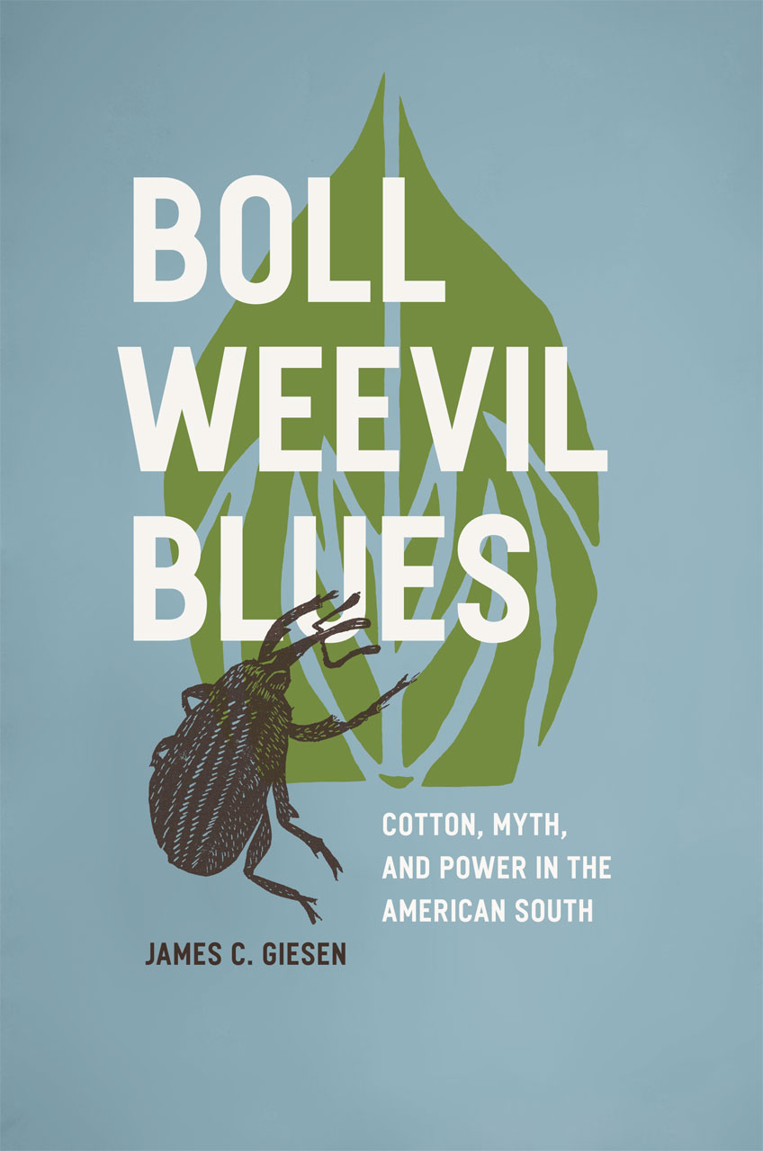 Boll Weevil Blues Cotton Myth And Power In The American South Giesen