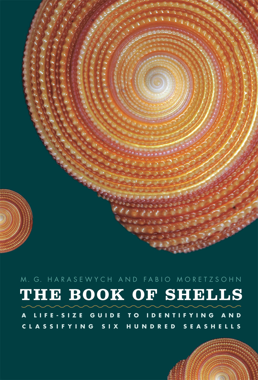 The Book of Shells: A Life-Size Guide to Identifying and ...