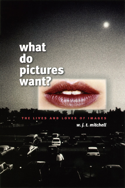 the photographic essay wjt mitchell