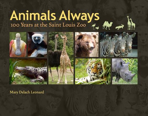 Animals Always