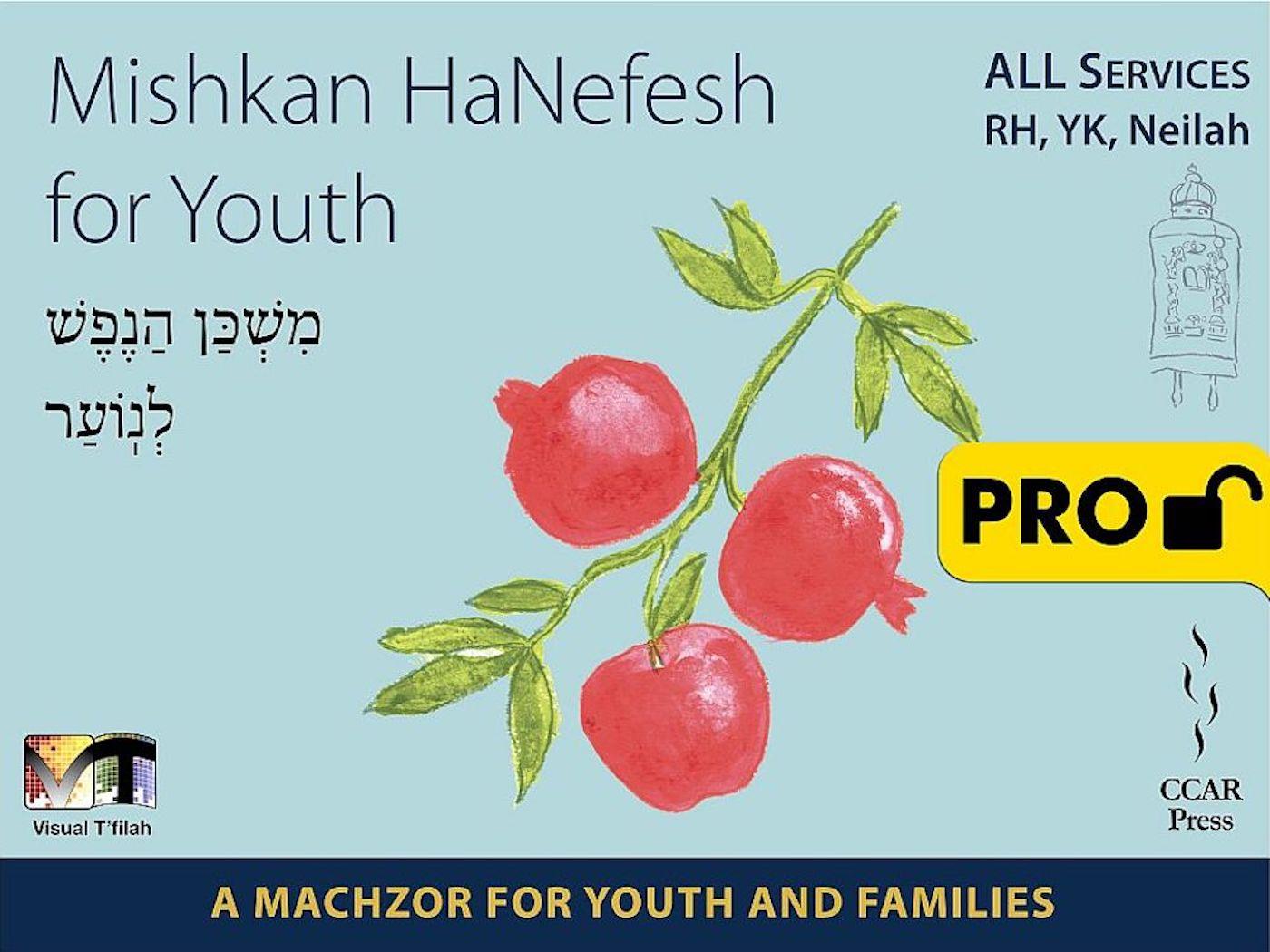 Mishkan HaNefesh for Youth Visual T'filah - All - Pro