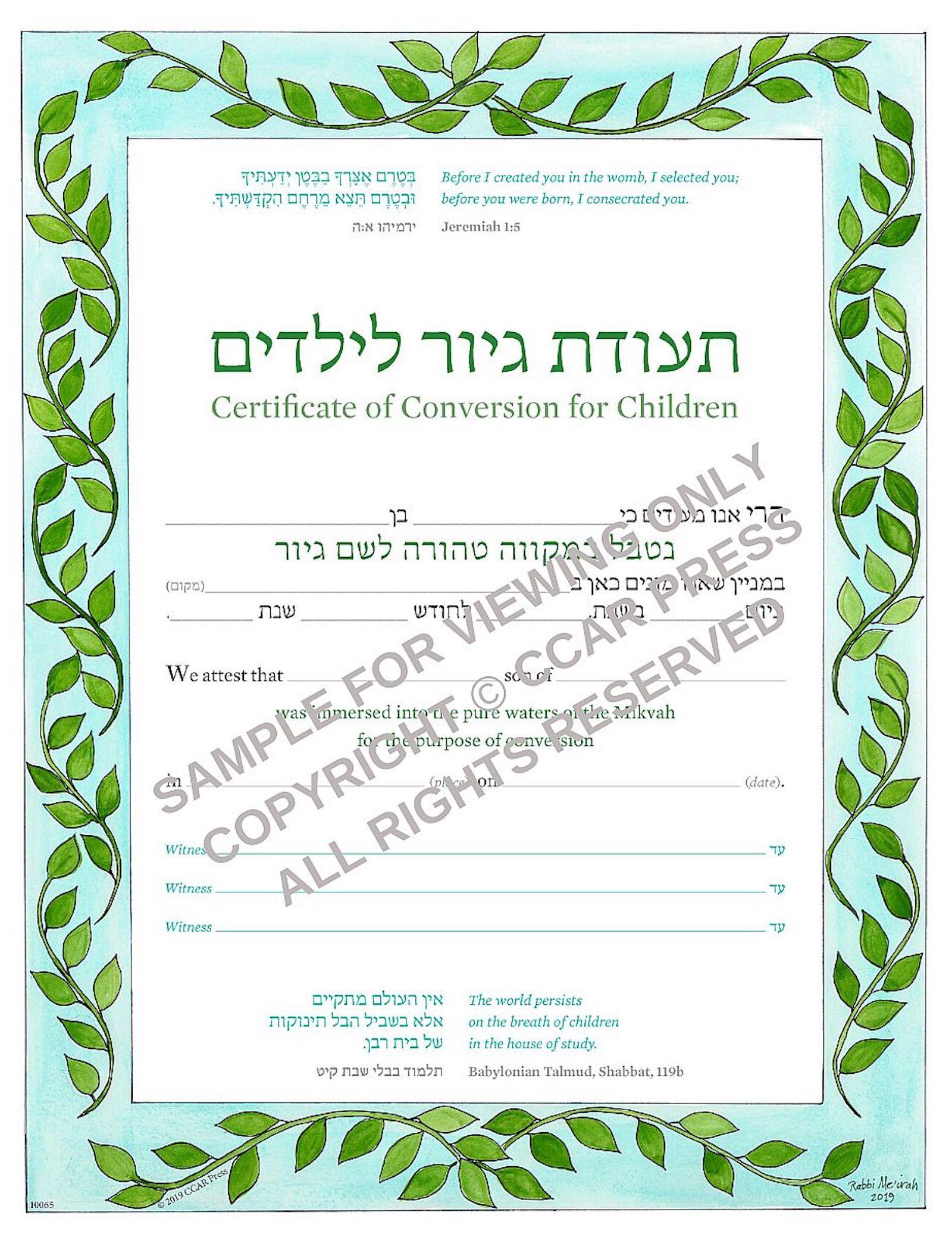 Child Conversion, Male - Certificate