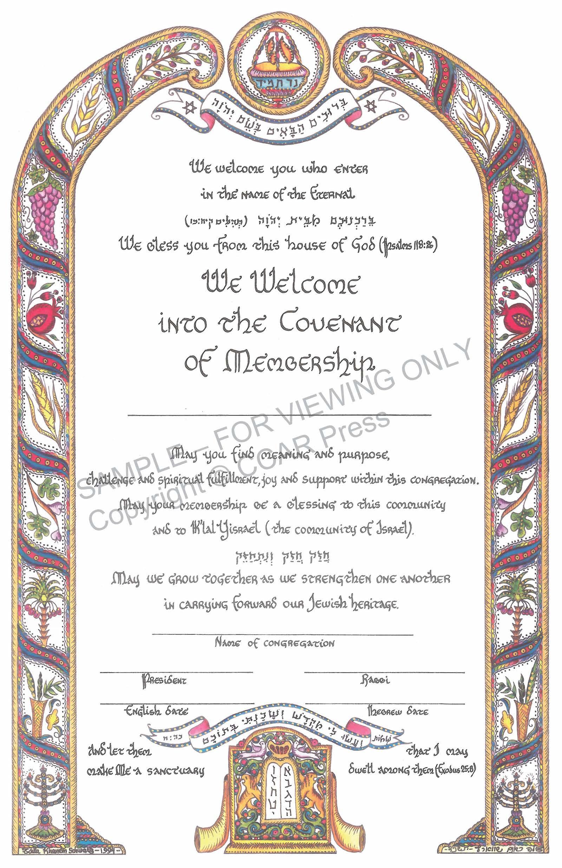 Synagogue Membership - Certificate