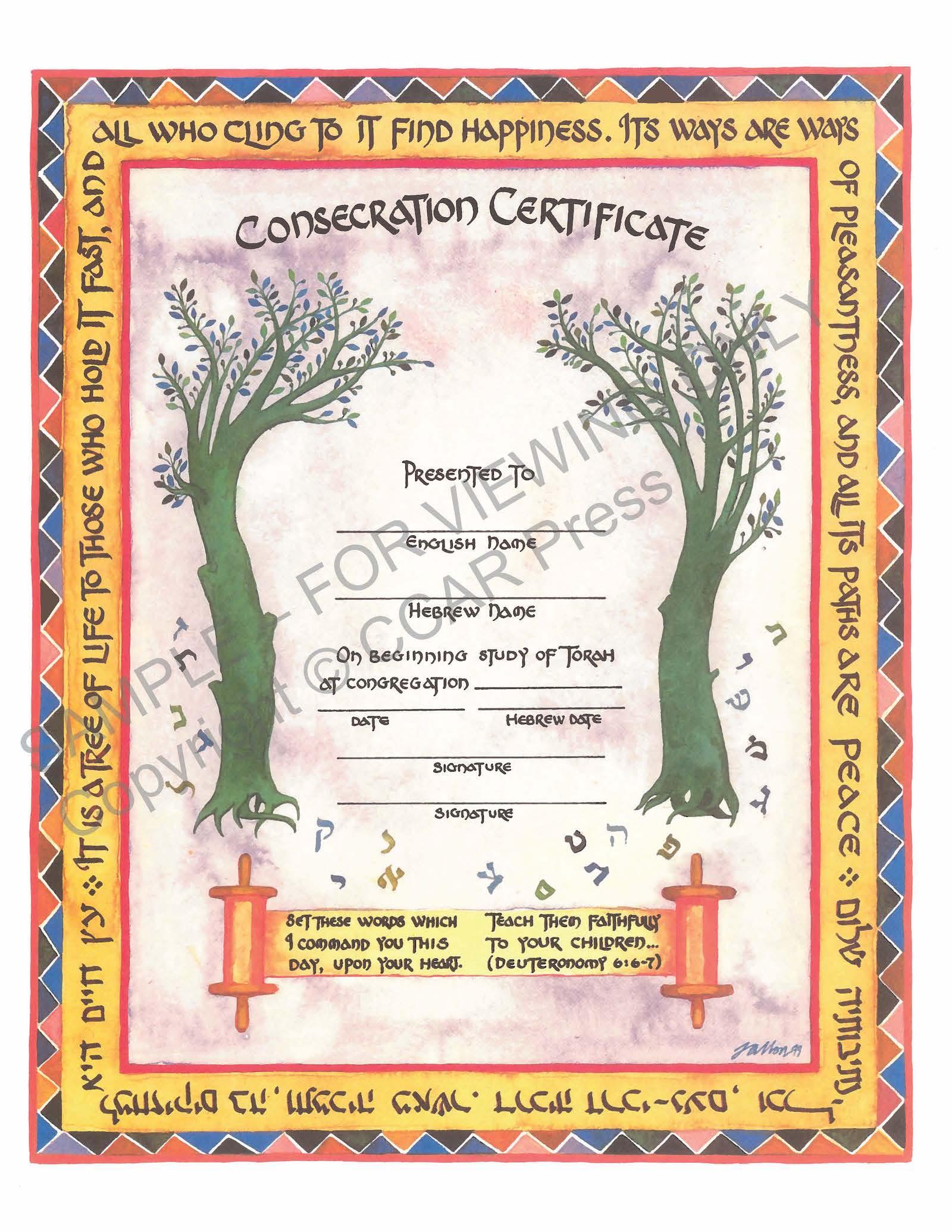 Consecration, Single, Illuminated - Certificate