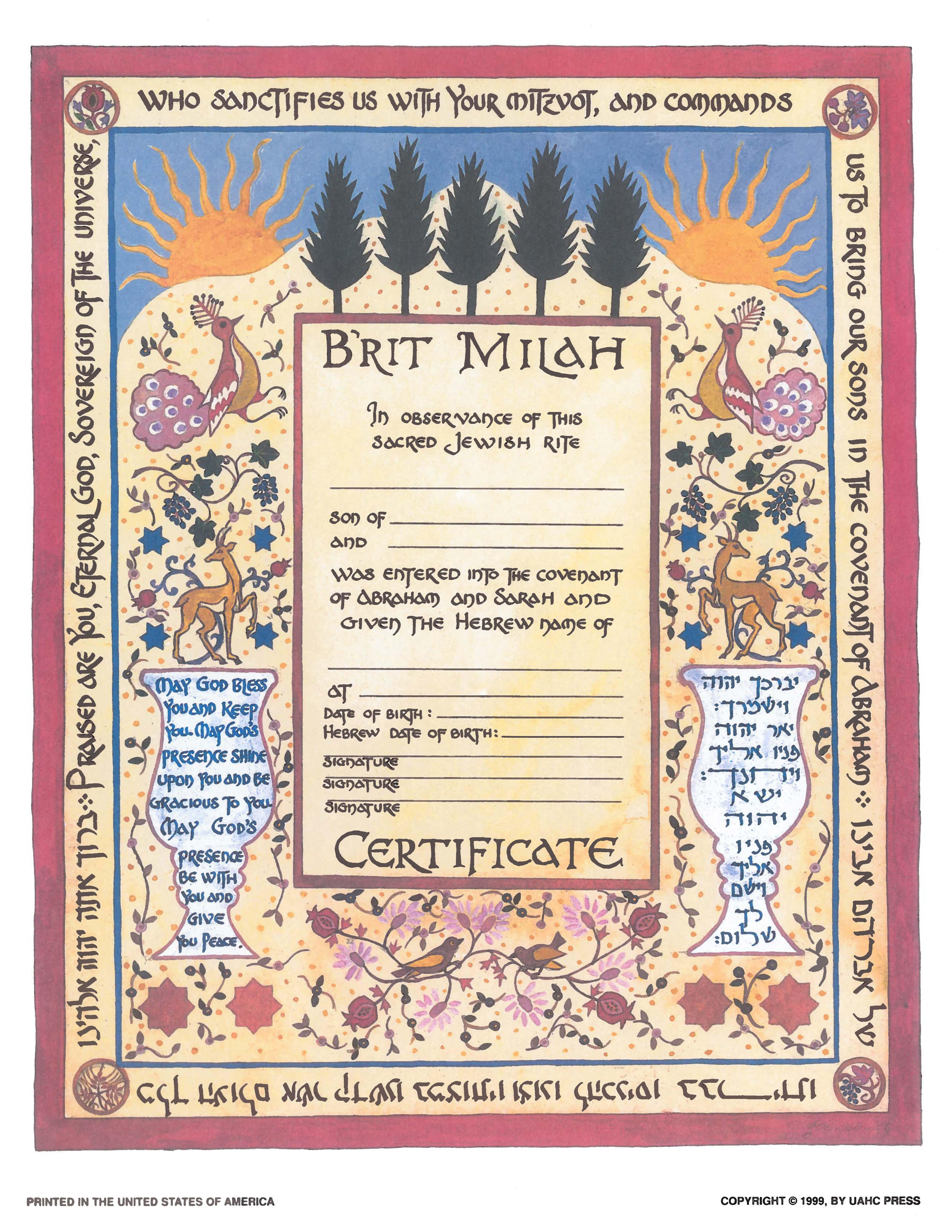 B'rit Milah, Single, Illuminated - Certificate