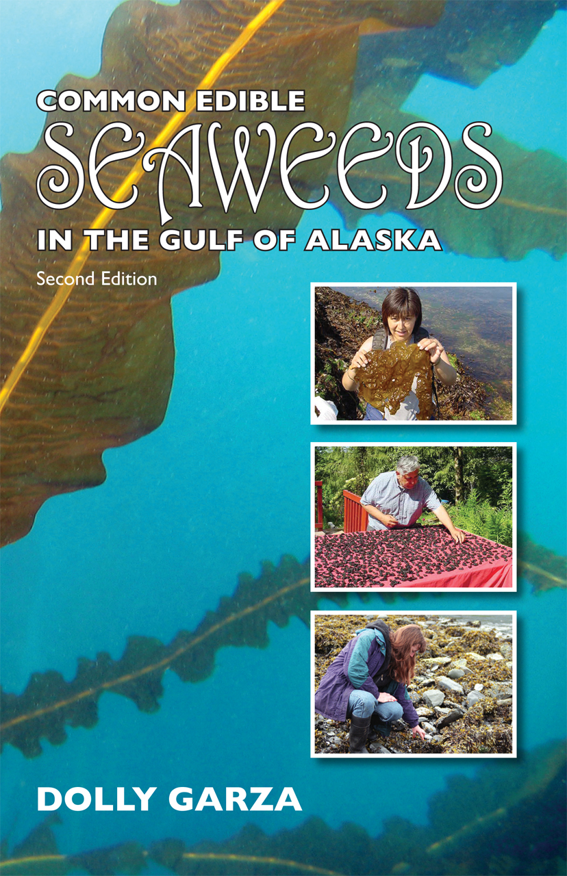 Common Seaweeds Of The Gulf Of California