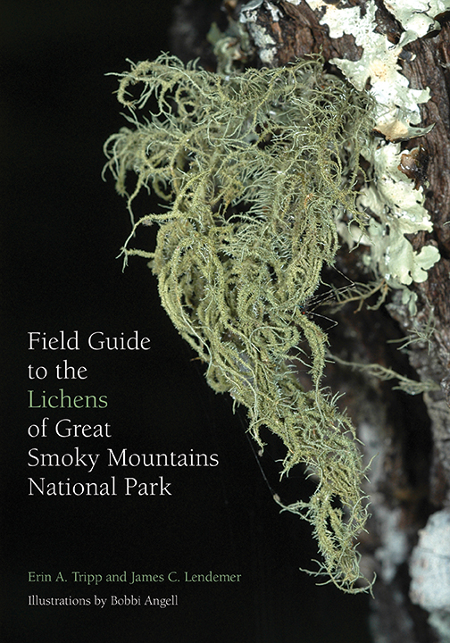Field Guide to the Lichens of Great Smoky Mountains National