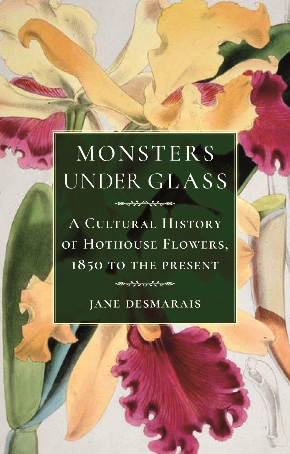 Monsters Under Glass A Cultural History Of Hothouse Flowers From