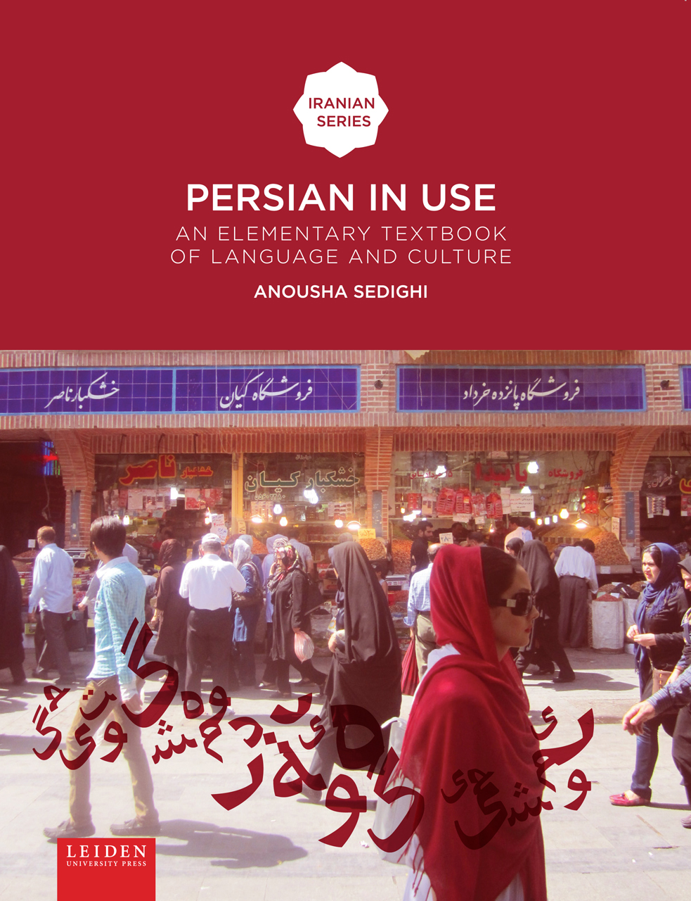Persian In Use An Elementary Textbook Of Language And Culture Sedighi